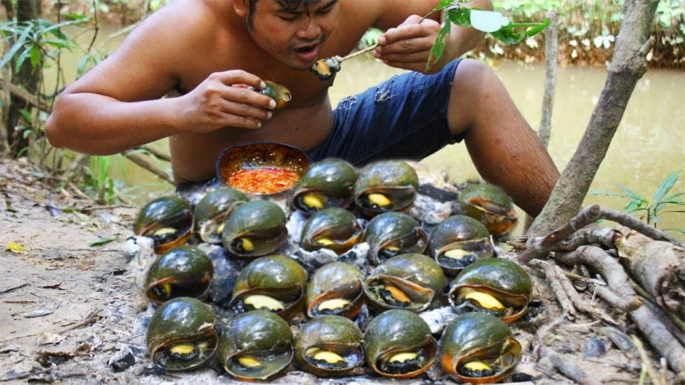Cooking Snail bbq eat with Chili Sauce – Collect Snail in River Grilled bbq